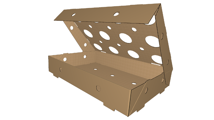 Corrugated box Twelve Holder Tray